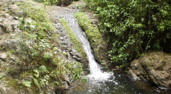 Caminata guiada Gran Canaria Valle de Azuaje