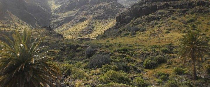 Virgin places of Gran Canaria